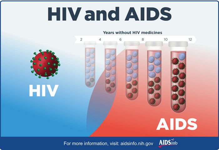 origins and evolution of aids viruses